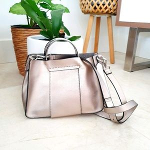 Zara Metallic Bag